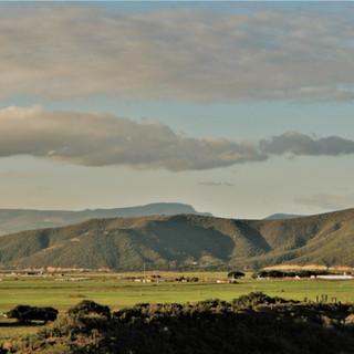 Towards the Transkei