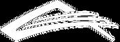 aeros_school_logo2.png