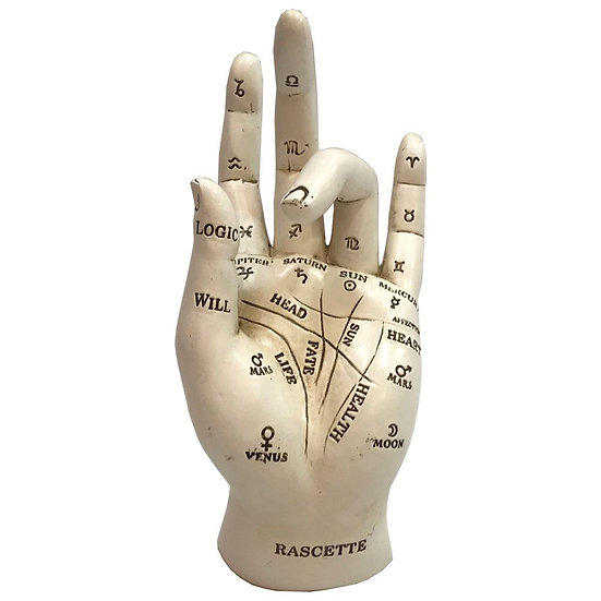 Palmistry Fortune Hand
