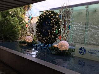 東京デート池袋偏(水族館)