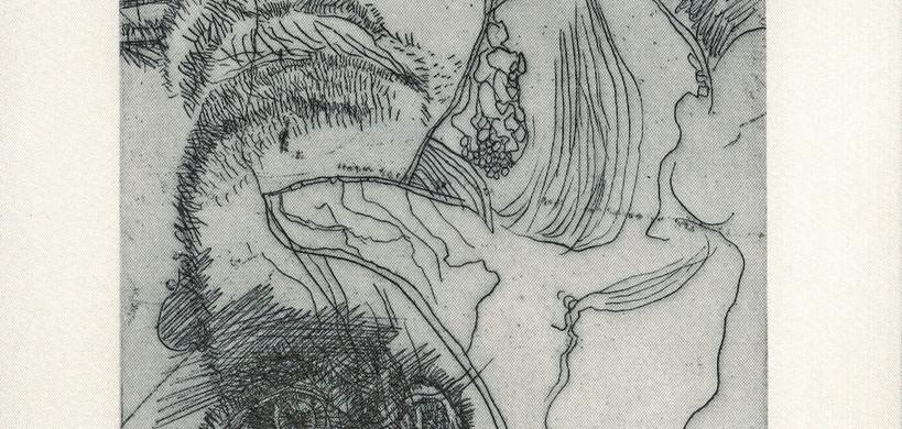 Giuseppe Zigaina. Anatomia di un uccello notturno.
