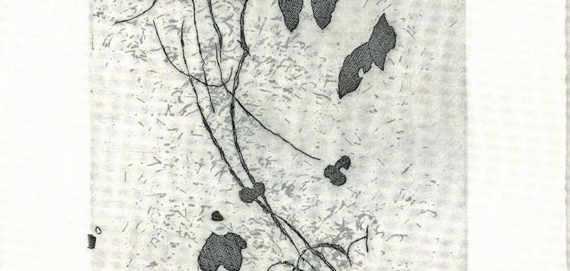 Kenziro Azuma. Colophon 18, 2004