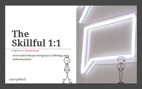 Skillful 1.1 Cover.jpg