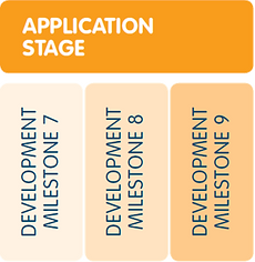 Application Stage.PNG