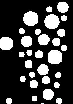bubbles white.png