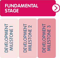 Fundamental Stage.PNG