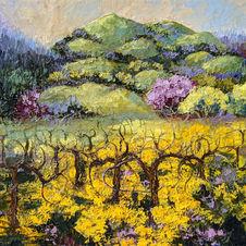 Wine Country Wild Mustard