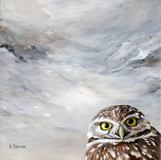 Peekng Bird #7 Burrowing Owl