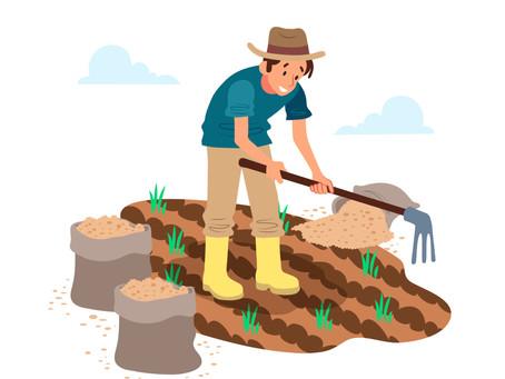 आत्मनिर्भर कृषि