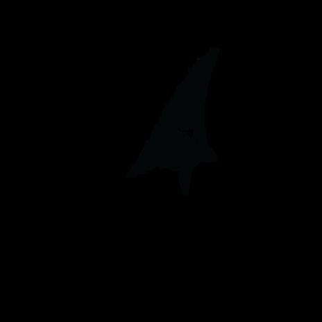Chundu_Logo.png