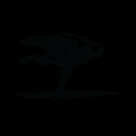 RWS_Logo.png