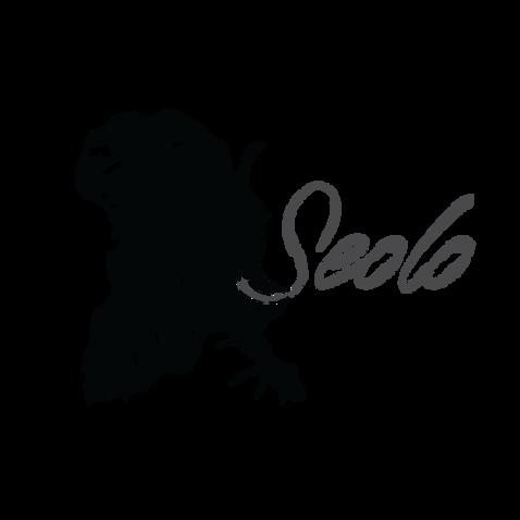 Seolo_Logo.png