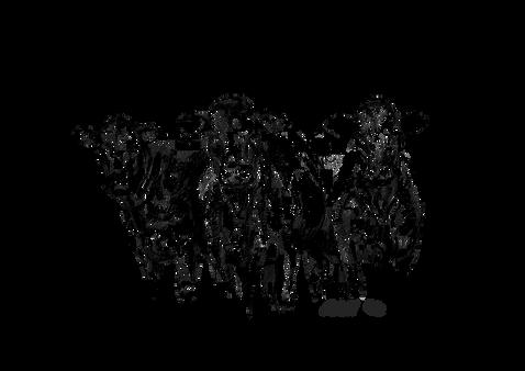AAM_Females_2019_Logos.png