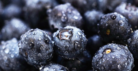 blueberry-close-up-john-rizzuto_edited.j