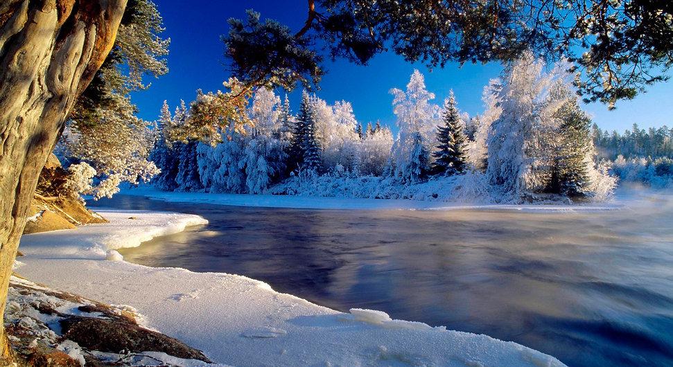 Talvitausta.jpg