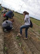 kleinAfterWork am Bauernhof_Fish & Chips_(c) ÖKL_210917 (18).jpg