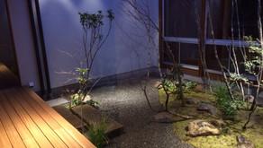 中庭植栽入りました