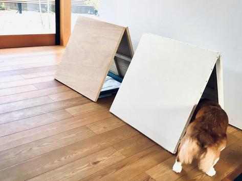 小さな建築(犬用トイレ)