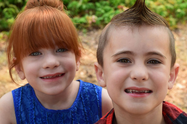 The Primary Types of Twins and the Unique Factors That