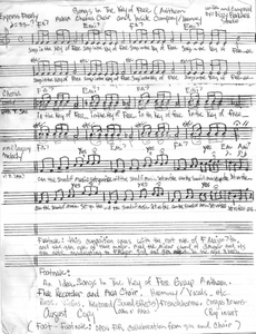 "Blackwell's handwritten lyrics to ""Songs in the Key of Free"""