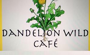 dandelion wild cafe logo for website.png