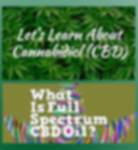 let's learn about cannabidiol.png