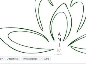 Vieni a trovarci sulla nostra pagina Facebook