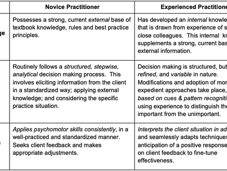 How does a novice differ from a more experienced practitioner?