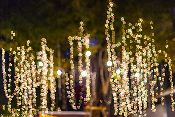bigstock-Blur--Bokeh--Decorative-Outd-25