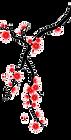 cerisier  bas gauche.png