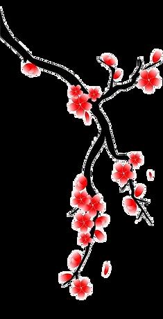 cerisier  basdroite.png