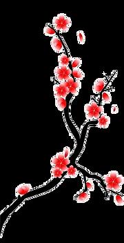 cerisier - Copie - Copie.png