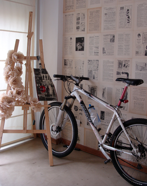 bicicleta casa chaucha