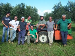 Sciavuru d'Aliva: profumo di terre di Sicilia (e di rivincita)