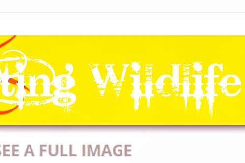 Hunting Wildlife Arrow wrap