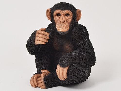 Statue - Chimpanzé Assis - FAUNE