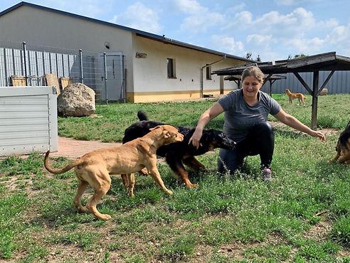 Eilenburger-Tierschutzzentrum-vermittelt