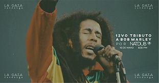 """12vo Tributo a Bob Marley por Natural Dub"""