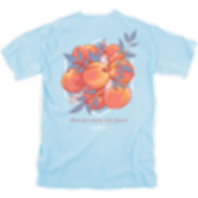14655-Practice-what-you-Peach-SS-Chambra