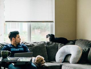 The Ellis Family | Renton Family Photographer