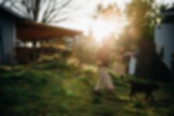 Boy walking around in backyard