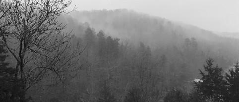 Arkansas Wilderness
