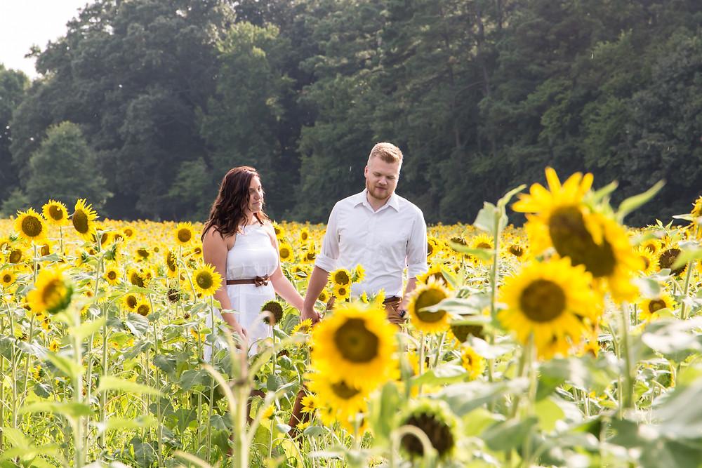 Smithfield, VA, Windsor Castle Park, engagmenet photos at the goldlen hour, sunflowers are like a relationship, Deborah Fox Photography, Virginia Photographer, Richmond wedding photographer