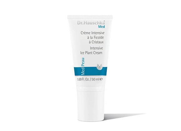 """קרם פנים טיפולי - אייספלנט ד""""ר האושקה Intensive Ice Plant Cream"""