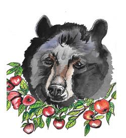 Bear with His Honey Crisp Apples