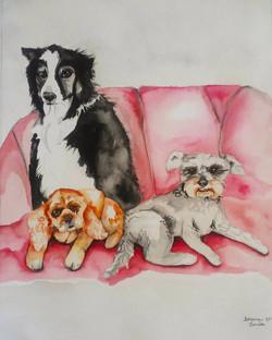 Trio on a Pink Sofa