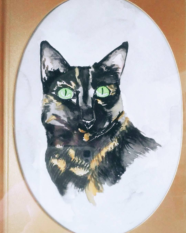Suki the Tortoise Shell Cat