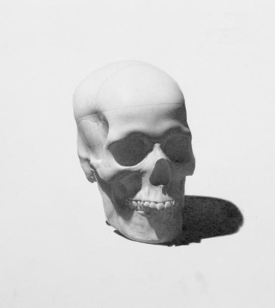 Skull Hi Res JPEG .jpg