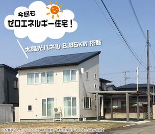 くじら通信81号