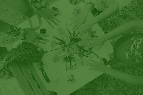 Imagem que representa o movimento vegano, com uma mandala de frutas e legumes, além de diversas mãos de crianças e adultos. Há um filtro verde sobre a foto.